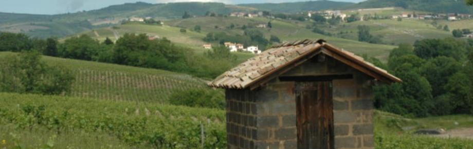 Domaine Bulliat Eric  B. de Bellevue Villié Morgon vin